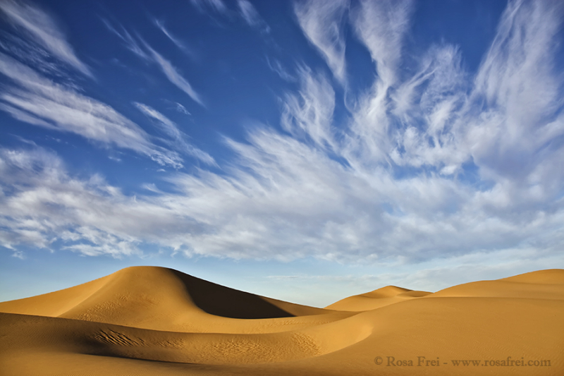 Beautiful Sahara desert sand dunes