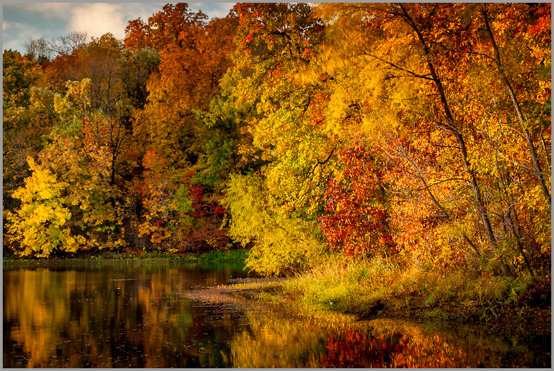 Radiant Fall at Blue Gray Nature Preserve