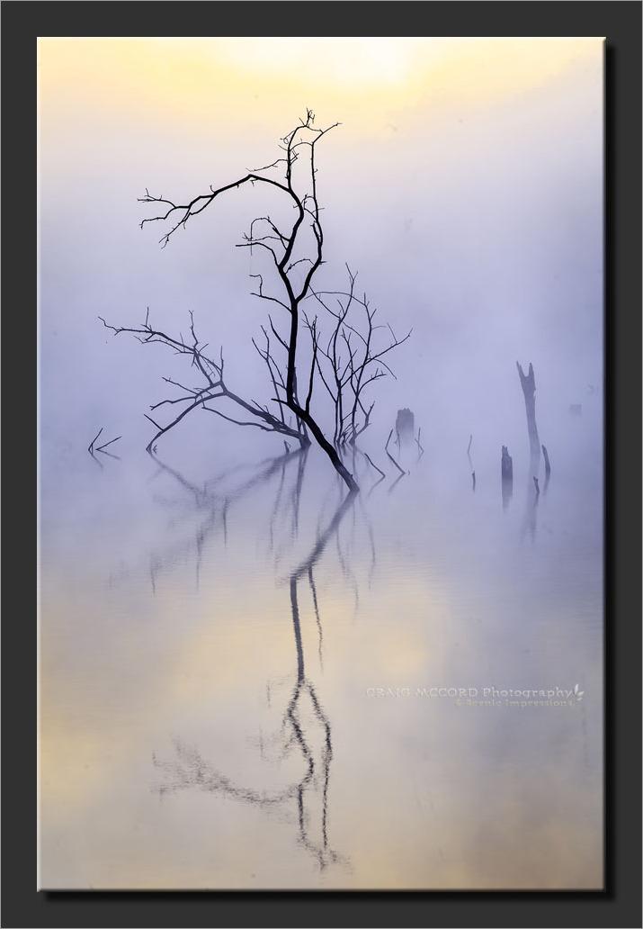 Foggy morning at Lone Jack Lake, Jackson Co, MO