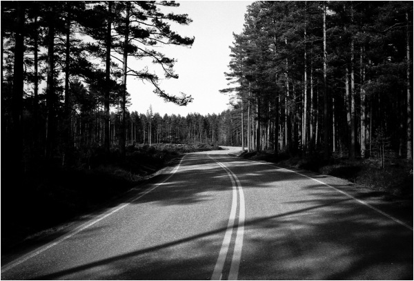 Détours forestiers