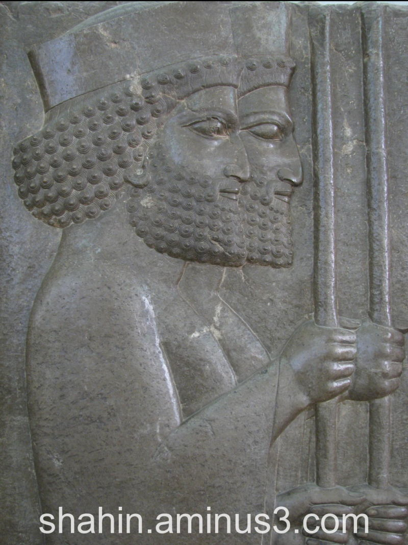 Achaemenid Soldiers