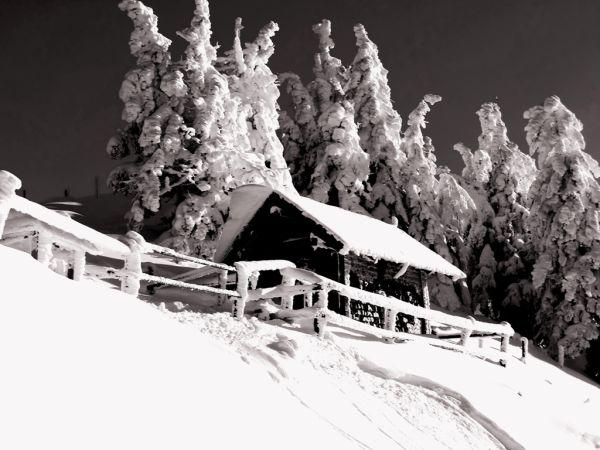 Winter-Impression (I)