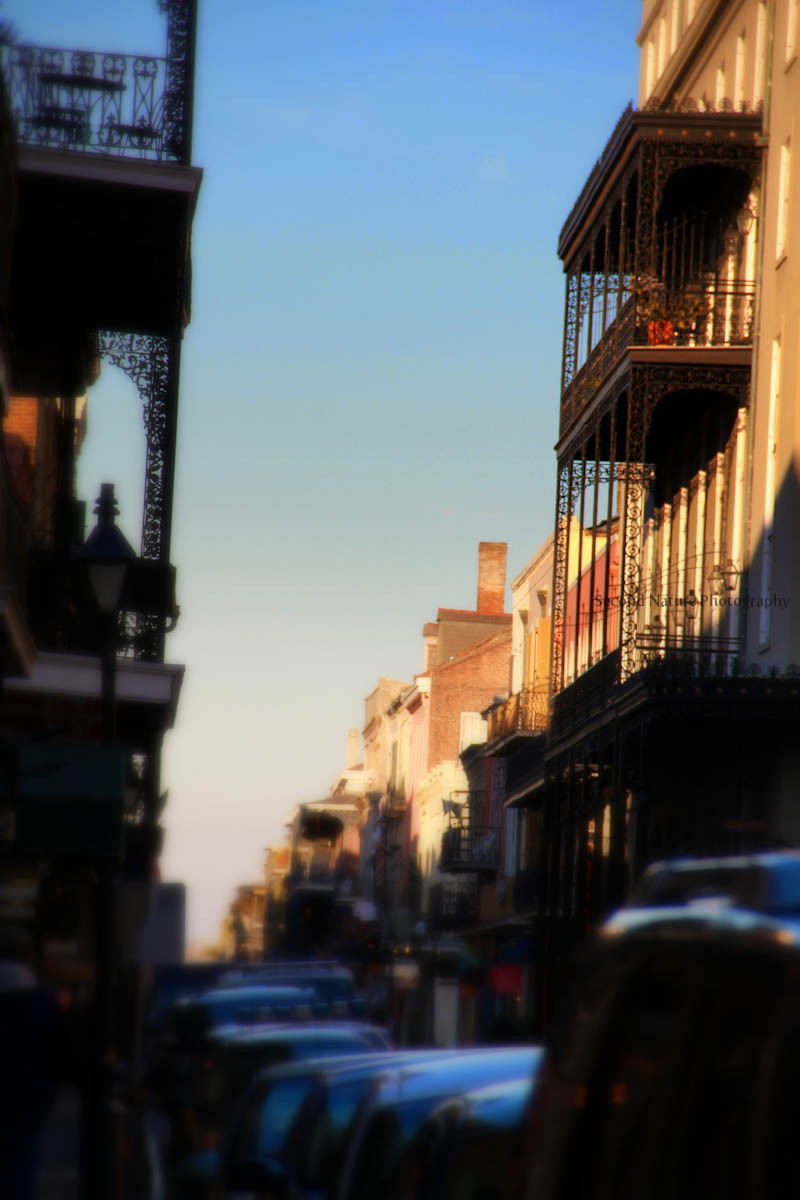 Photo taken in New Orleans, LA.