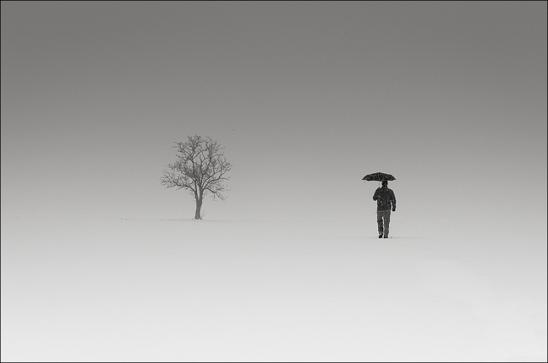 Landscape and minimalism with my umbrella