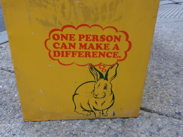 one person can make a difference