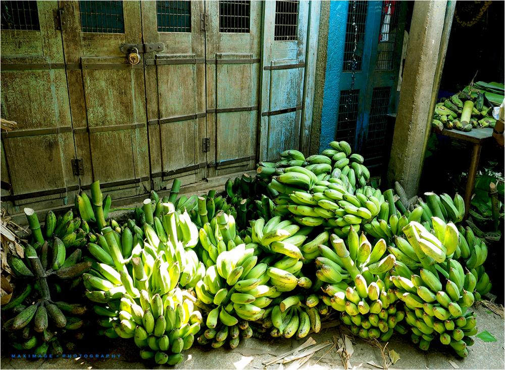 Vert bananes!...