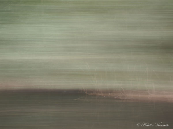 Paysage en 'flou artistique'
