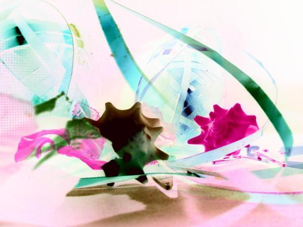 photo experiment with invert color and still life