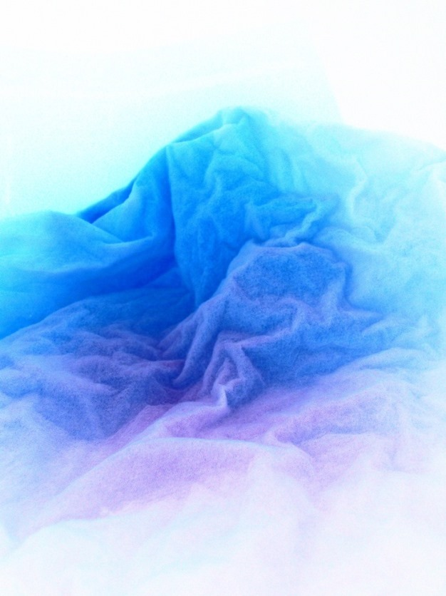 color inverted  fine art photo of backlit tissue