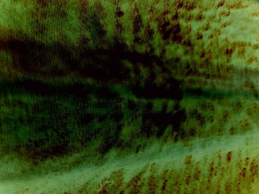 experimental negative long exposure of curtains