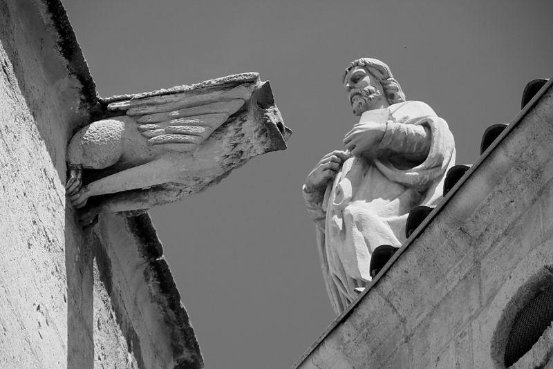 La bestiola i el sant