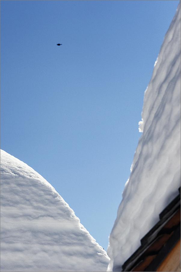 Avoriaz, february 2012