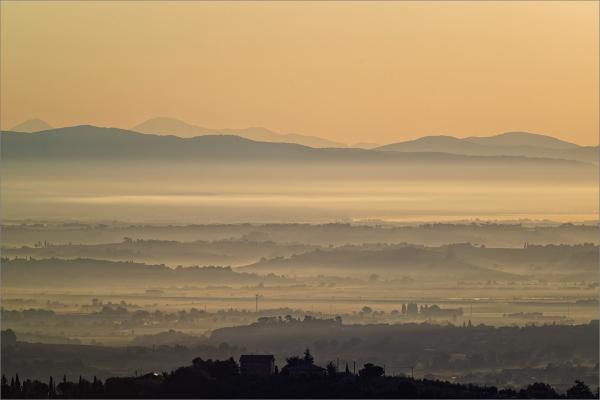 Montepulciano, August 2014