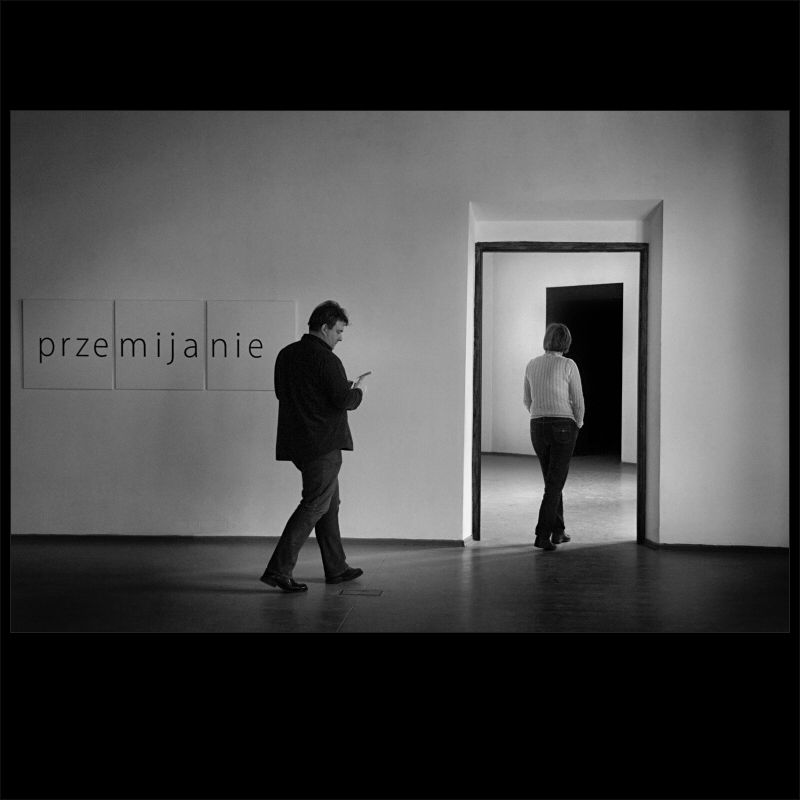 passing by - pictures at an exhibition 6