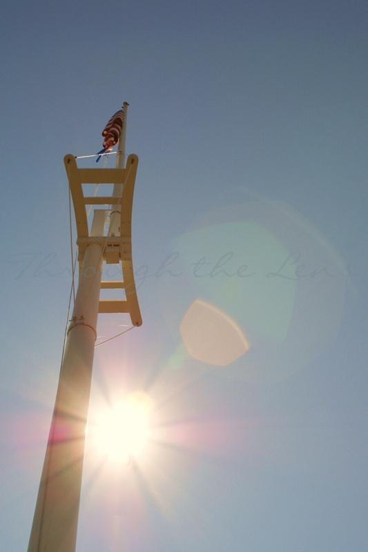 Stand Tall, Shine Bright