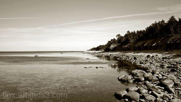 Kivine rand, Rocky shore