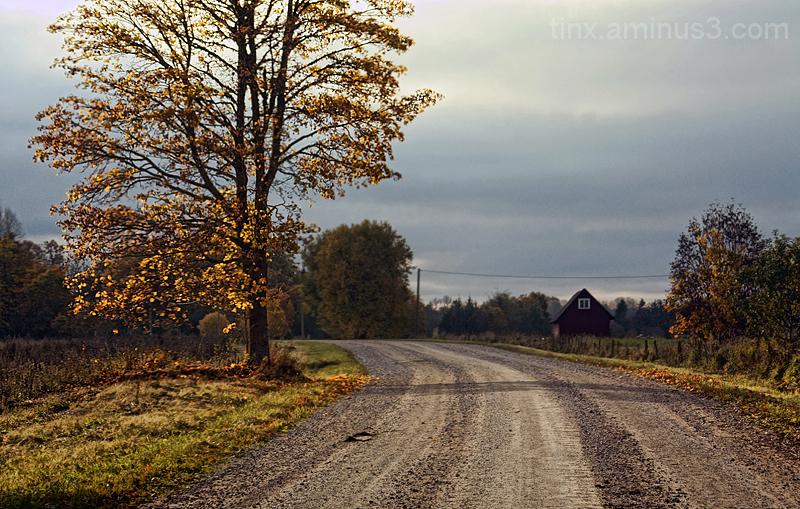 Sügisene meeleolu, Autumn mood