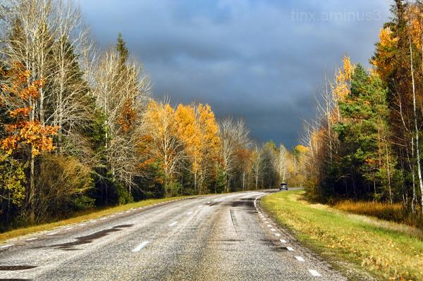 Teel, On the road