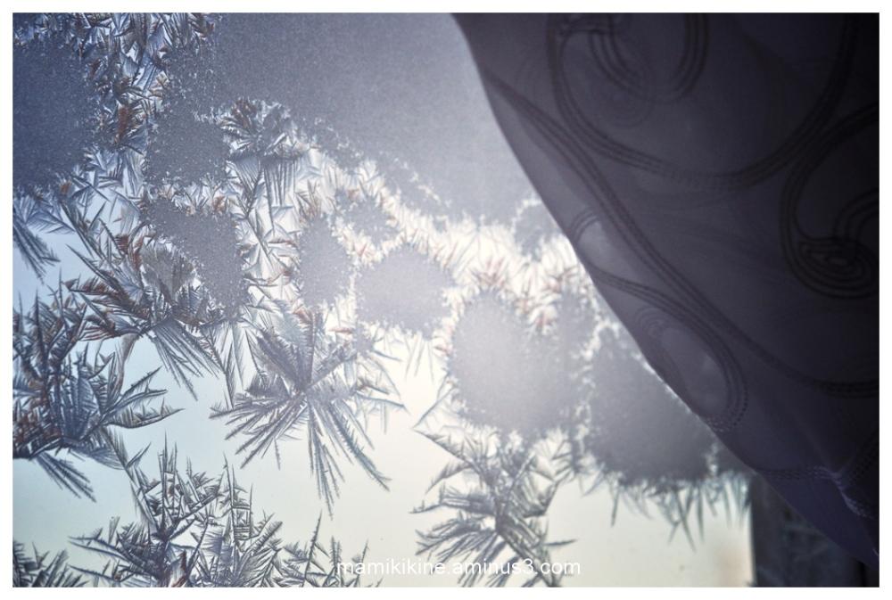 La fenêtre givrée, the frosted window
