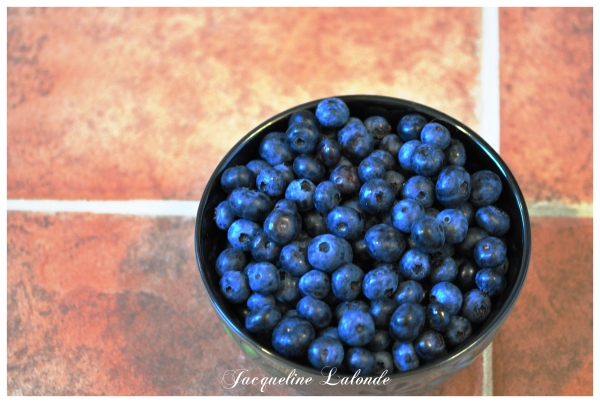 Bleuets, blueberries