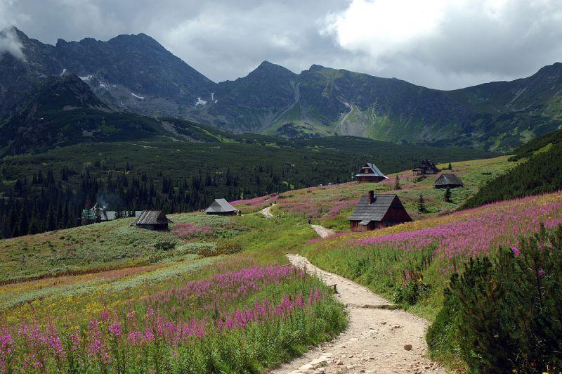 Tatras Zakopane