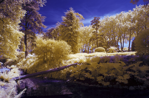 Primavera en infrarrojo. Infrared Spring. #8