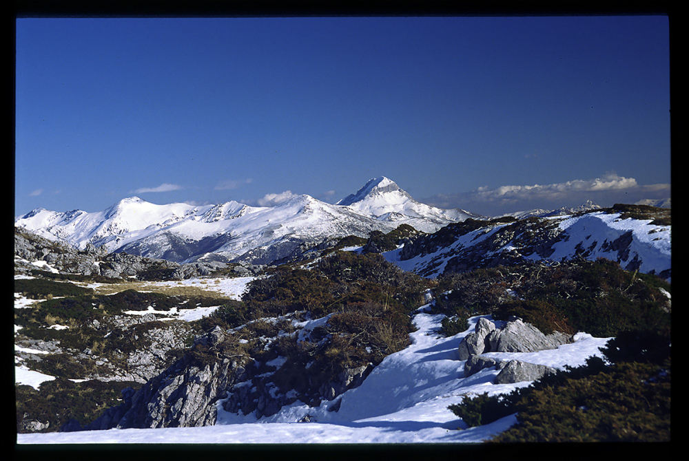 Paisaje invernal. Winter landscape.