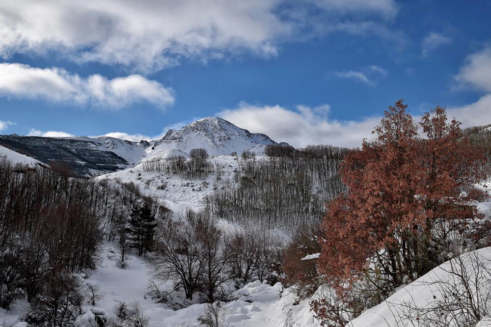 Invierno. Winter #4