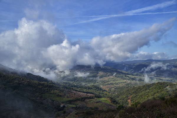 Capricho andaluz. Andalusian suite #6