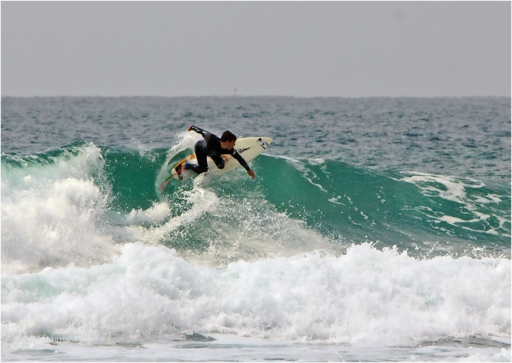 Surfing at La Jolla Shores, CA