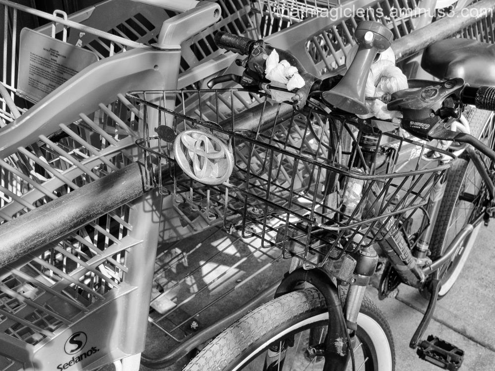Toyota Bike