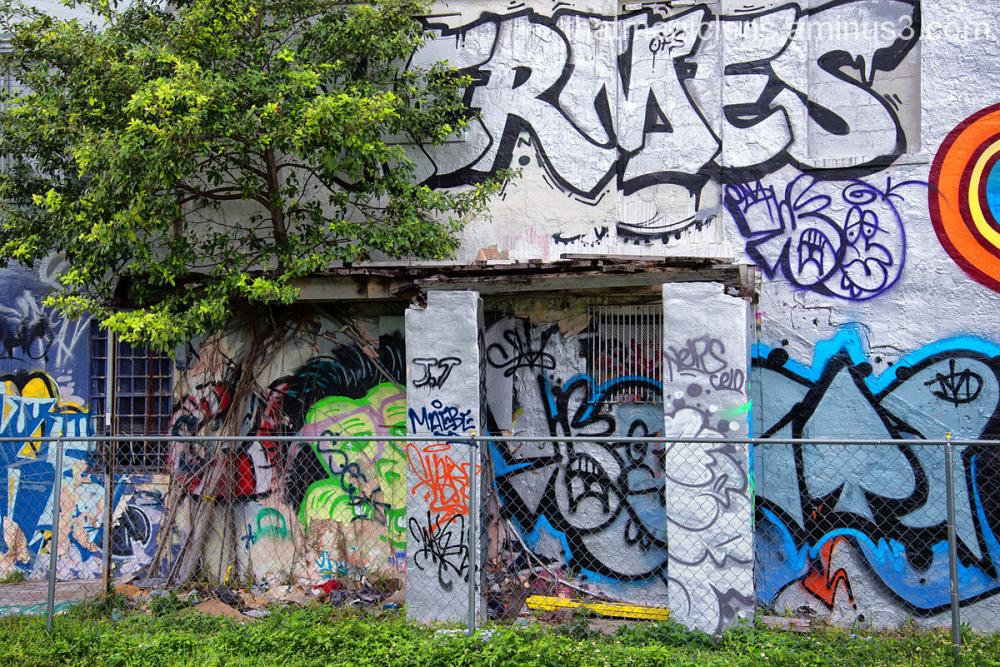 Wynwood Graffiti Art
