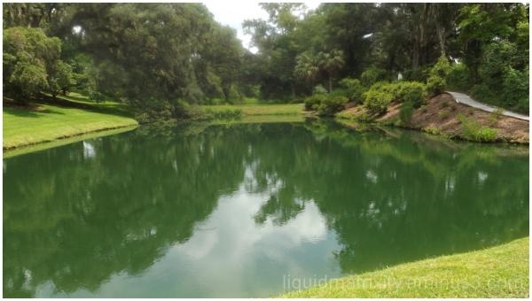 Mepkin Abbey Ponds