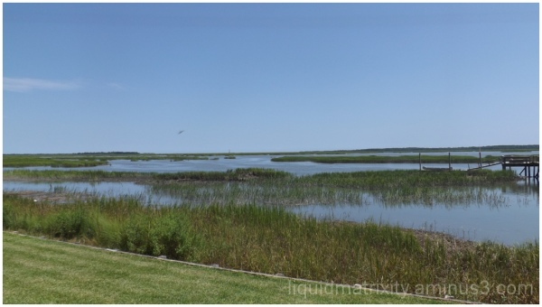 Marsh View : Last of the Summer Days