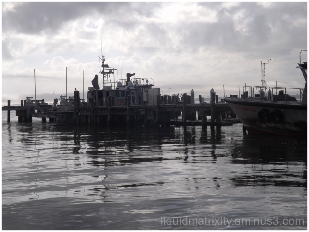 Wharf Boats