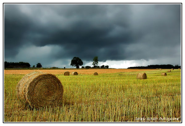 moissons champ blé fauchage meule foin nuages
