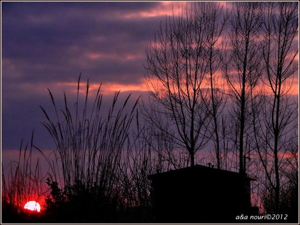 sunset on the cottage