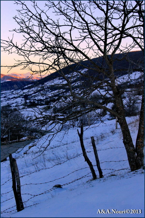 Winter's purity-11