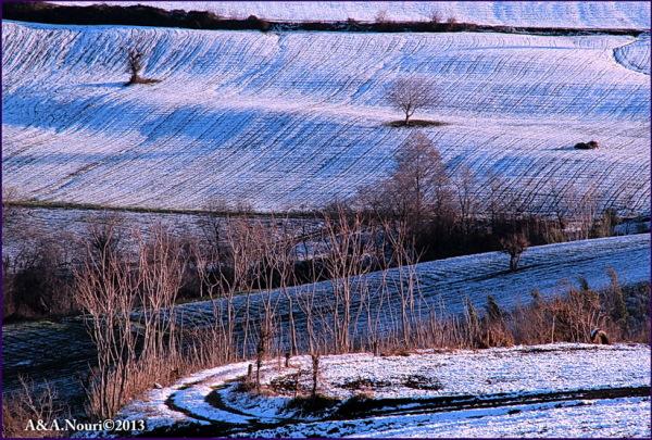 Winter's purity-5