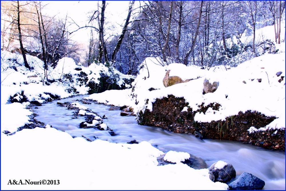 Winter's purity-9