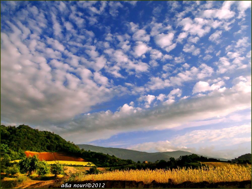 when sky sings...