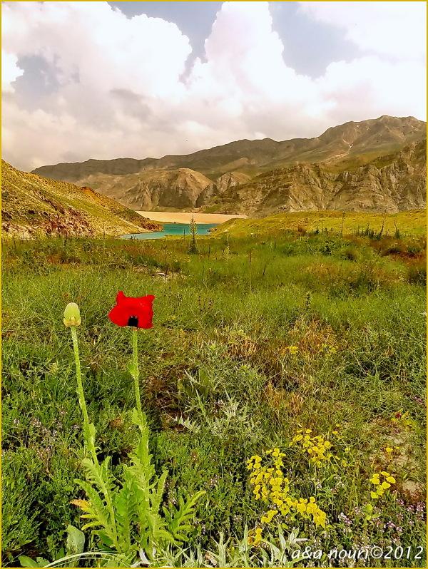 Lar national park