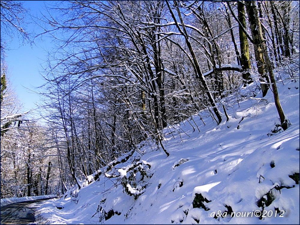 freezing nature