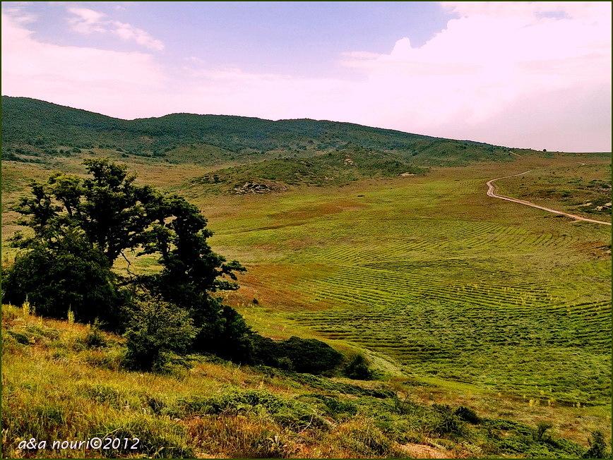 road to Jahan-nama
