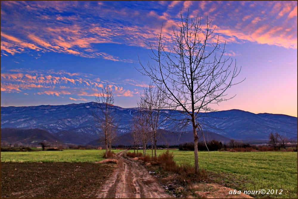 sky flare in winter