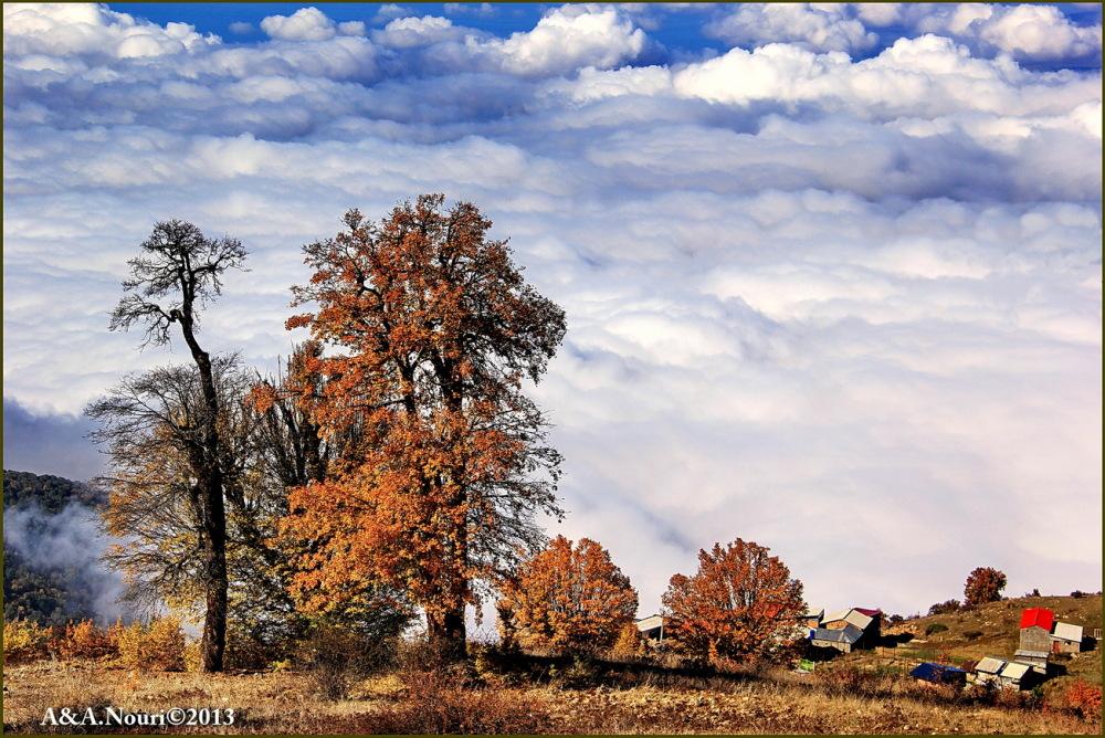 glory of Autumn-35