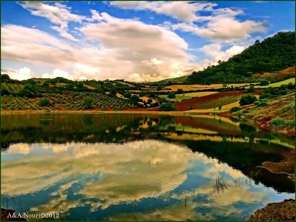 colors festival reflection