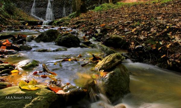 glory of Autumn-131