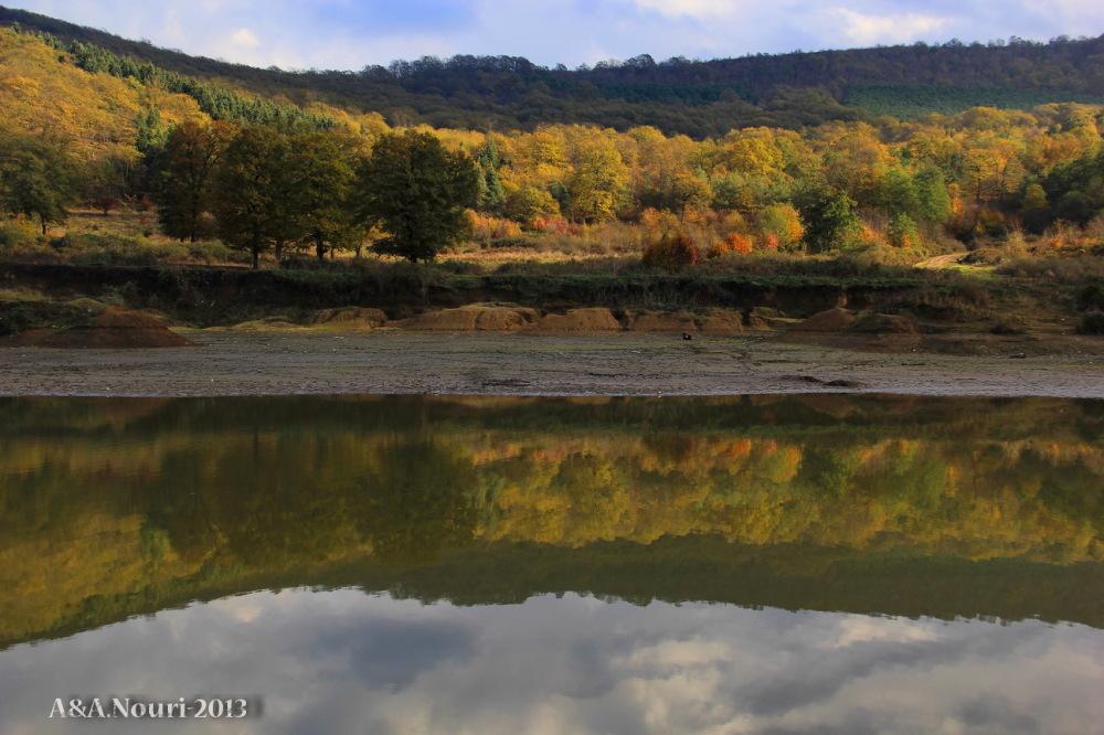 glory of Autumn-165