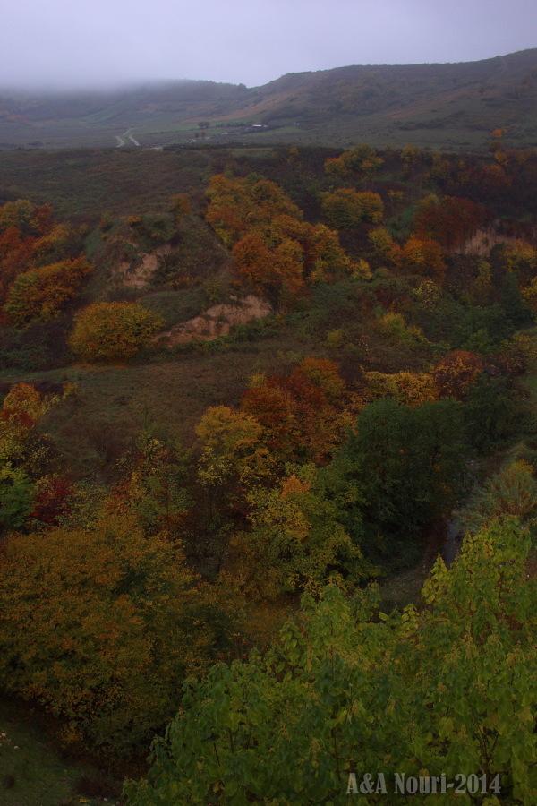 glory of Autumn-175